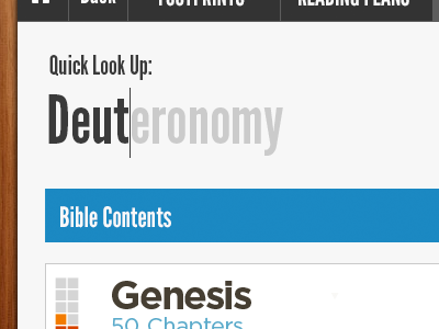 Quick Lookup bible reader text area autocomplete