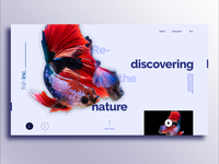 Fish Store Landing Page Design Idea