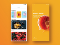 Stock Photography App UI Design Idea