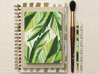 Mara-Mi Havana Palm Collection