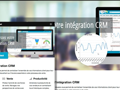 CRM Consulting rwd crm consulting responsive web design