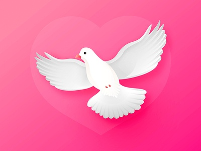 Dove For Valentine's day