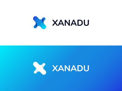 Logo Xanadu graphics clean design brand white blue shot company it logotype type x xanadu logo