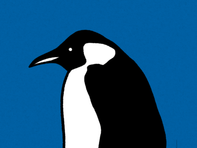Penguin Awareness Day 2020
