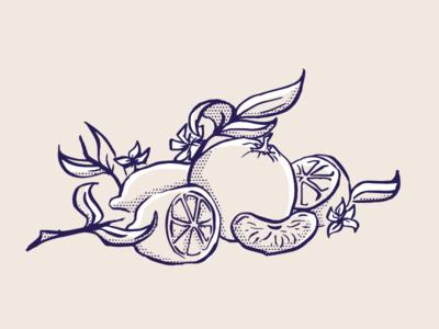 Fruity illo quick sketch