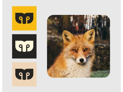 Fox icon graphic design vector illustration design illustraion