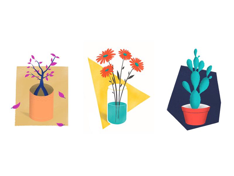 Three Lives bonsai cactus leaf flower plant botanic nature apple pencil procreate ipad pro illustration