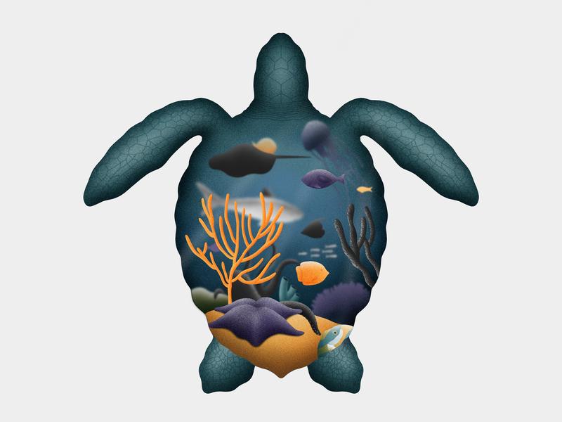 Sea Turtle 1/3 ocean shark fish turtle sea animals apple pencil procreate ipad pro illustration
