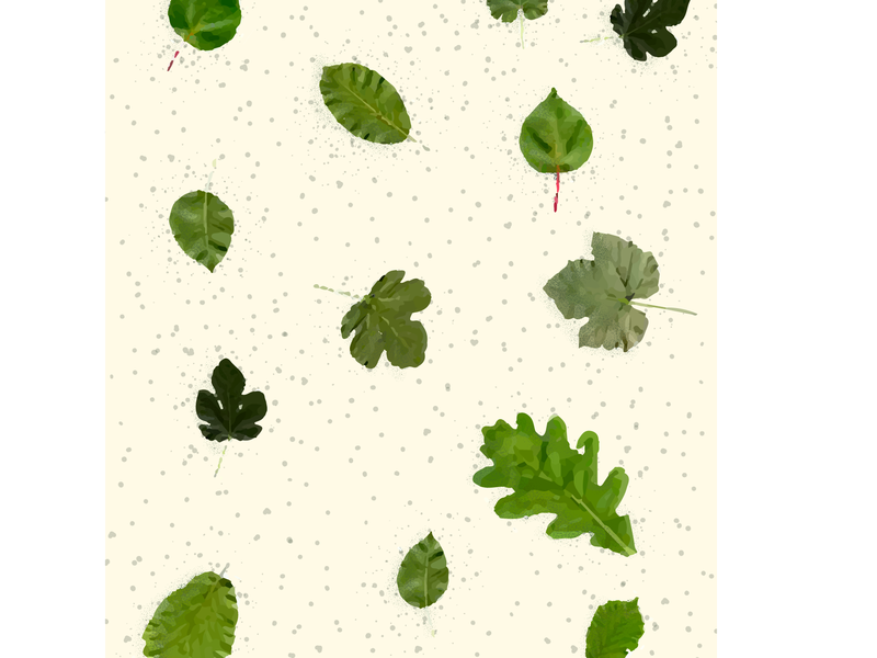 Leafs nature illustration