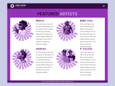 Sonic Boom record studio ui wordpress theme web design vector illustration branding design