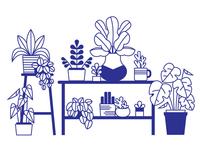 Plants Mural