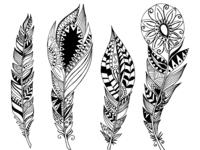 Mandala Feather