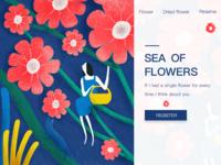 sea of flowers  花海(1)
