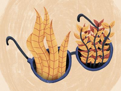 #024 nature plants glasses illustration blue sequels