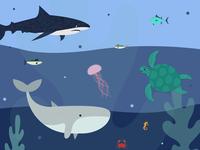 World Ocean Day protect awareness world ocean day fish seahorse crab jellyfish whale shark sea world ocean turtle illustraion
