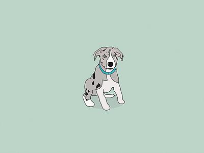 Puppy Inspired Illustration dog illustration merle corder collie collie min green doggo cute illustration dog puppy