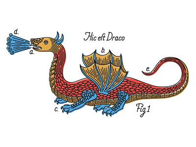 Hic est Draco 1 beast manuscript dragon character history fantasy illustration medieval