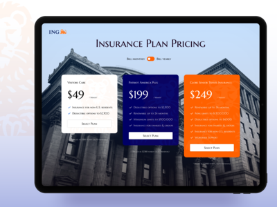 IMG Pricing Page