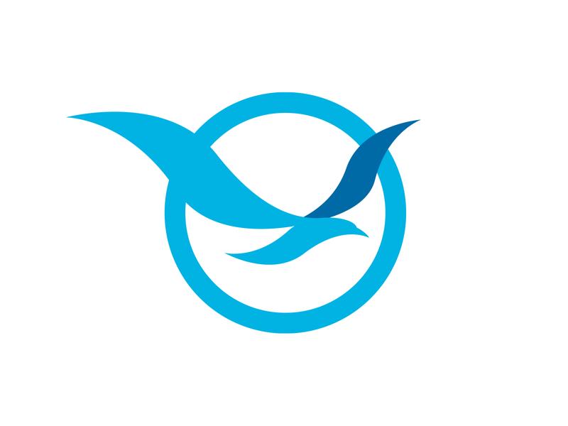 Bird logo animal bird logo bird design logo branding