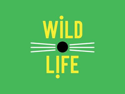 Wildlife thirty logos racoon whiskers typography type yellow green animals wildlife logos design logo