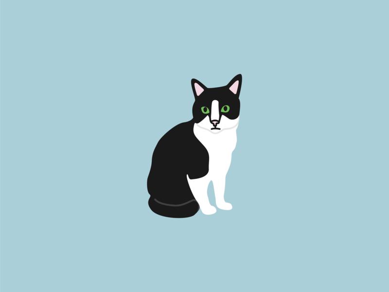 Holly Belle Sits freelancer graphic designer illustrator graphic design design modern illustration vector illustration digital illustration tuxedo cat cats illustration cat