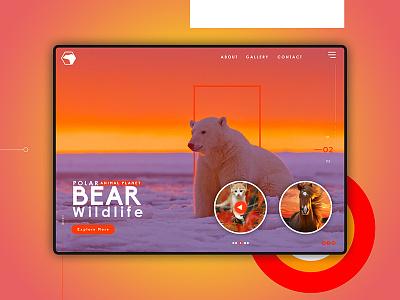 Polar Bear website concept landing page nature animal wallpaper design web website ui app ux