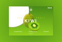 Kiwi Fuzzy Fruit