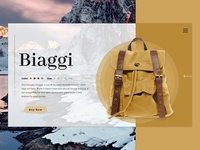 D Backpack (Biaggi)Concept