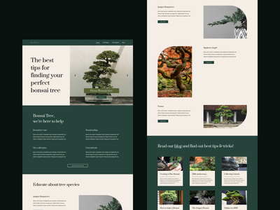 Website - Bonsai simple layout clear ui bonsaitrees uxdesign page layout website design webdesigns design uidesign bonsai layout page design webdesigner uiux ui webdesign website