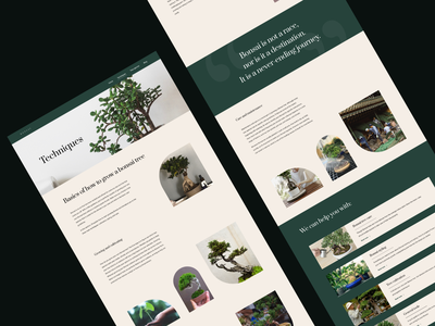 Website - Bonsai Techniques uidesign ui website concept webpage figmadesign figma bonsai page layout page uiux ux website builder webdesign website