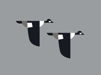 Barrow Ducks