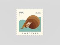 Nautilus - USA Postcard Stamp - Underwater Series