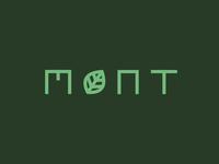 M I N T