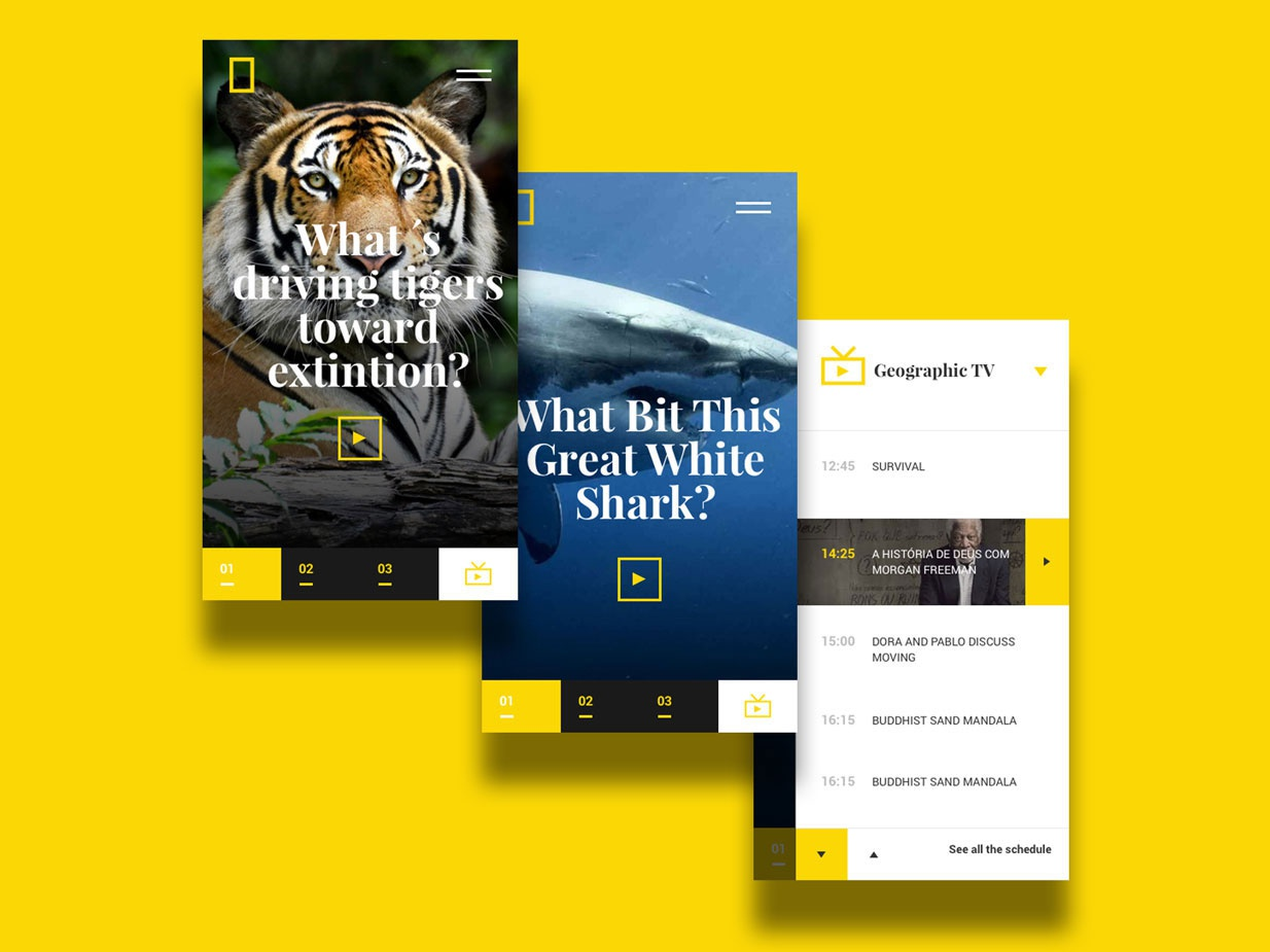 National Geographic TV Mobile mobile clean art animation responsive minimal website web ux ui flat design app