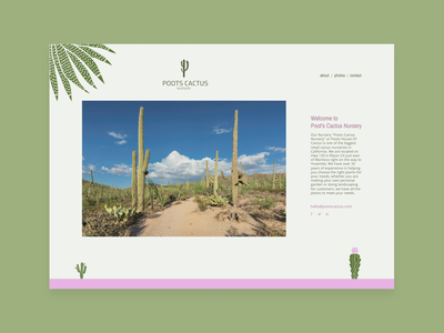 Redesign Poots Cactus Nursery website cactuses web design webdesign website interaction design identity branding identity design logos desert cactus homepage illustration vector logo branding web flat ui minimal design