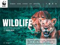 WWF - Lading Page design