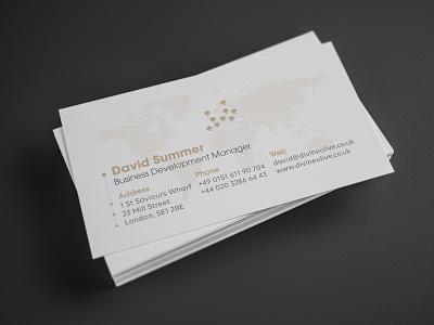 Business Card vector design logotype business card