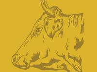 Cow // 03