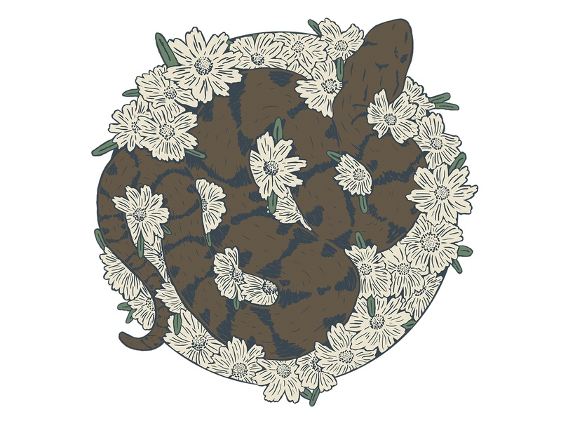 Water Moccasin wildlife drawing design illustraion wild flowers flower snake water moccasin florida cottonmouth