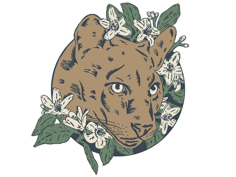 Florida Panther drawing floral illustration flower wildlife wild cat big cat orange blossom panther florida