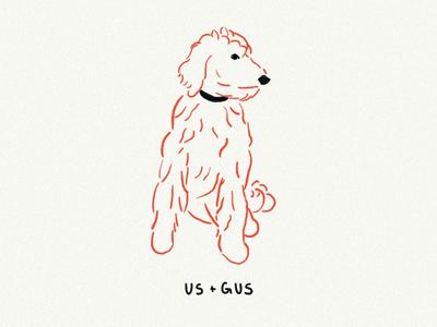 Golden doodle illustration