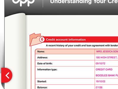 Interactive Credit Report - Continues