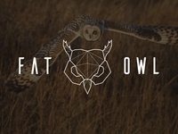 Fat Owl Studio _ Logo Redesign