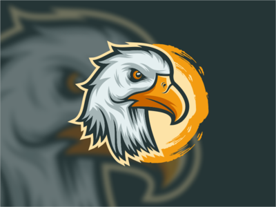 EAGLE HEAD law america consulting finance company general vector graphicedesigner logodesigner head eagle zerologicstudio branding design illustration ideas dribble logo logoinspirations instagram