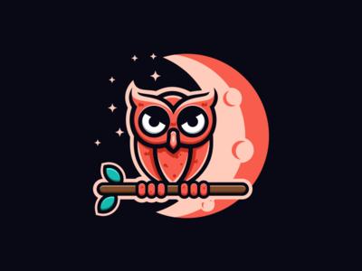 A NIGHT OWL dubai vectors stars moon night branding brandidentity company owl general logoplace thedesignmate design vector illustration dribble logo ideas instagram logoinspirations