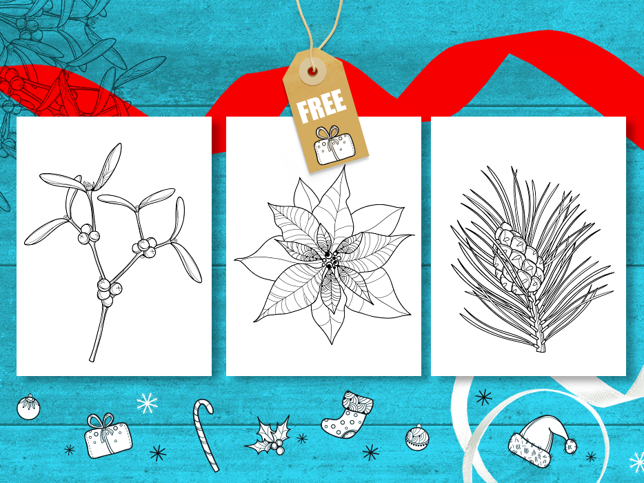Adult coloring New Year's stories for free download. #2 outline adult coloring book xmas newyear mistletoe poinsettia pine cone coloring page symbol black  white flora free coloring book contour line art drawing