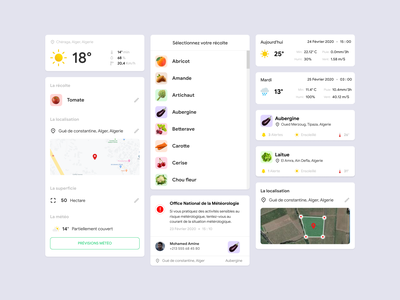 Components - Agriculture Mobile App algeria ux ui farmer agriculture weather food vegetable component interface app mobile