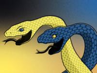 Python Tamer