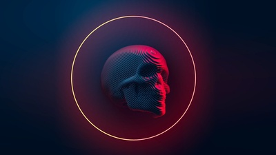 Sliced skull 2
