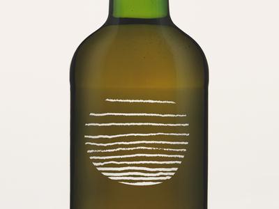 Kombucha Project Logo Study organic illustration packaging bottle layers waves tea scoby kombucha